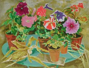 Les pots de fleurs II by Louis Vuillermoz