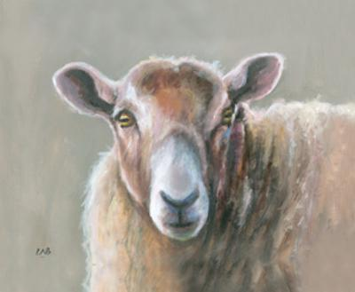 Looking Sheepish by Louise Brown