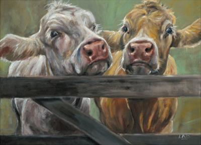 Two Moos by Louise Brown
