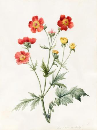 Composite, 1827