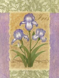 Sweet Iris by Louise Max