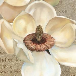 Magnolia Masterpiece I by Louise Montillio