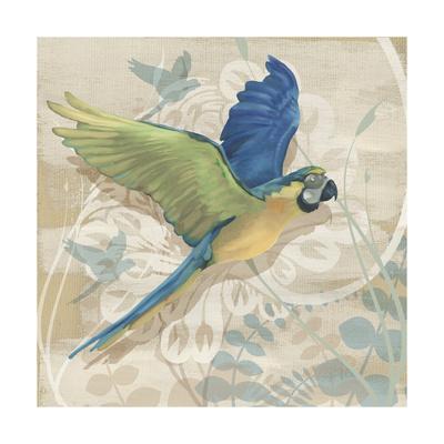 Parrot Society I
