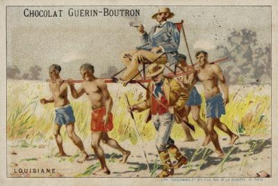 Louisiana--Giclee Print