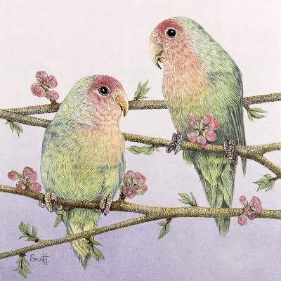 Love Birds-Pat Scott-Giclee Print