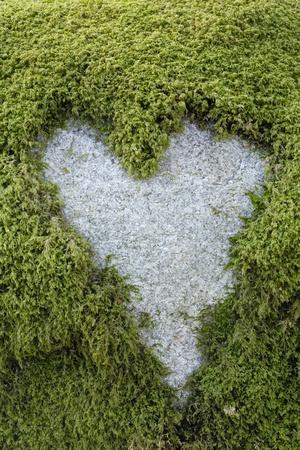 https://imgc.artprintimages.com/img/print/love-heart-shape-in-moss-on-granite-bolder_u-l-pxwkgp0.jpg?p=0