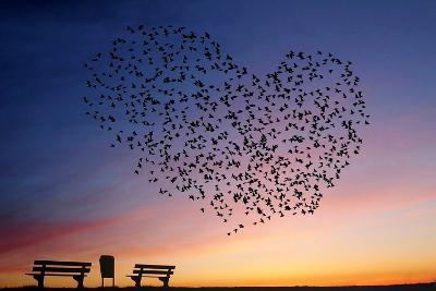 Love Is in the Air- Annemieke-Photographic Print
