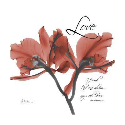 Love Orchid-Albert Koetsier-Premium Giclee Print