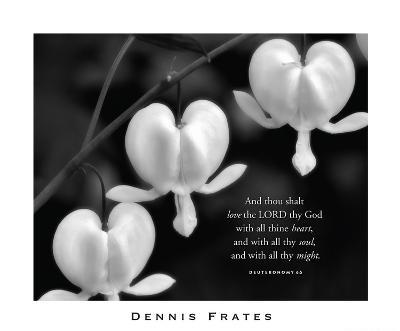 Love the Lord-Dennis Frates-Art Print