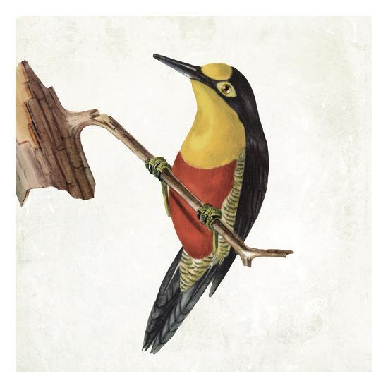 Lovely Birds 4-Jace Grey-Art Print