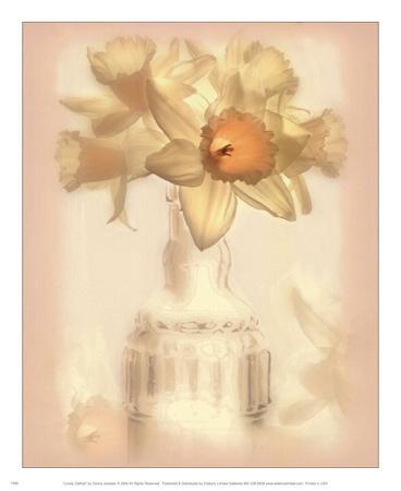 https://imgc.artprintimages.com/img/print/lovely-daffodil_u-l-f8u81l0.jpg?p=0