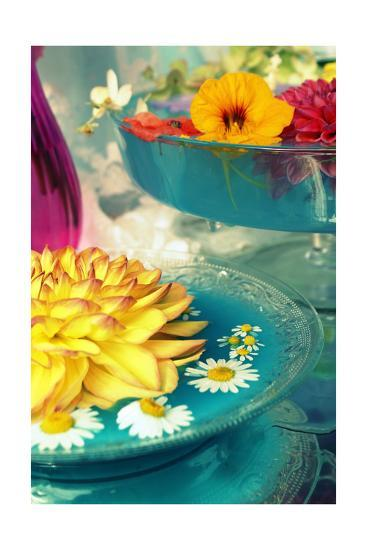 Lovely Table Blossoms I-Alaya Gadeh-Art Print