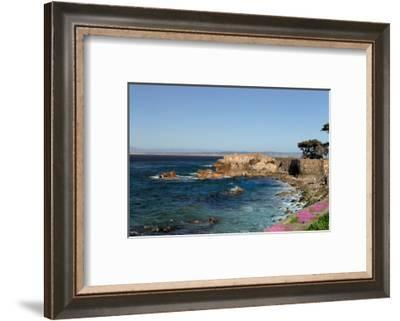 Lover's Point at Pacific Grove, California.-Wolterk-Framed Photographic Print
