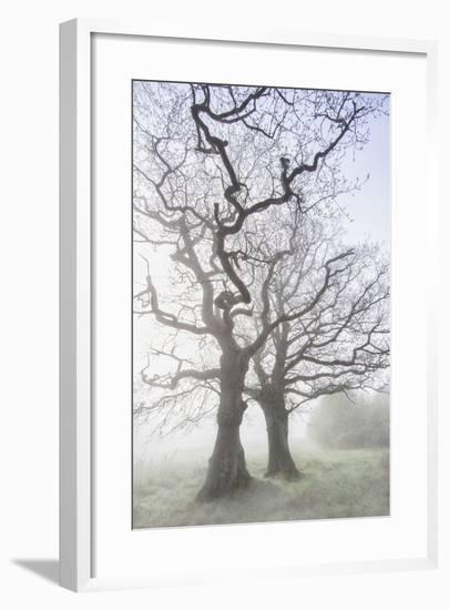 Lovers Of The Lake-Viviane Fedieu Daniel-Framed Photographic Print
