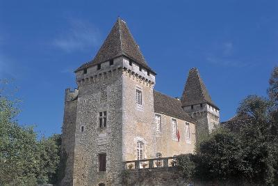 Low Angle View of a Castle, La Marthonie Castle, Aquitaine, France--Giclee Print