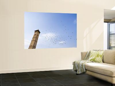Low Angle View of Great Mosque Minaret and Flock of Birds-Holger Leue-Wall Mural