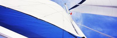 Low Angle View of Sails on a Sailboat, Gulf of California, La Paz, Baja California Sur, Mexico