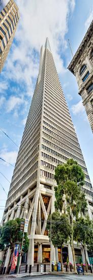 Low Angle View of Skyscrapers, Transamerica Pyramid, San Francisco, California, USA--Photographic Print