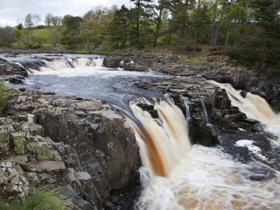 Low Force in Upper Teesdale, County Durham, England-Mark Sunderland-Photographic Print