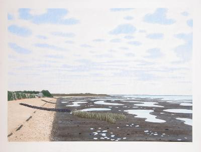 Low Tide 20-Bill Sullivan-Limited Edition