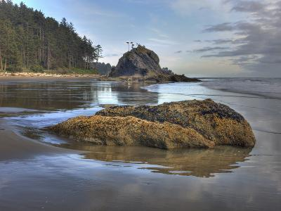 Low Tide, Olympic National Park, Washington, USA-Tom Norring-Photographic Print