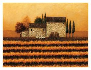 Fall Vineyard by Lowell Herrero