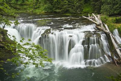Lower Lewis Falls, Lewis River, Cougar, Washington, Usa-Michel Hersen-Photographic Print