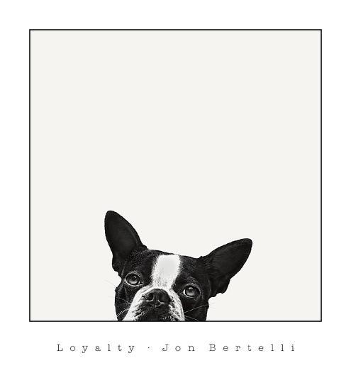 Loyalty-Jon Bertelli-Art Print