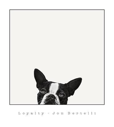 https://imgc.artprintimages.com/img/print/loyalty_u-l-f6d5nd0.jpg?p=0
