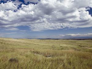 Little Big Horn Battlefield National Monument, Montana, Usa by Luc Novovitch