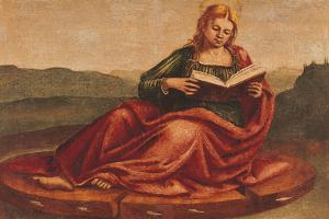 St Catherine of Alexandria by Luca Signorelli