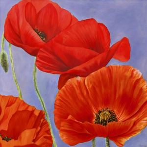 Dance of Poppies I by Luca Villa