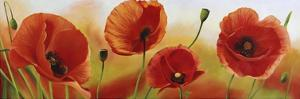 Poppies in the wind by Luca Villa