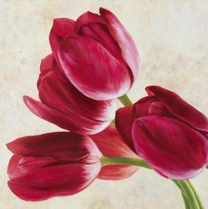 Tulip Concerto II by Luca Villa