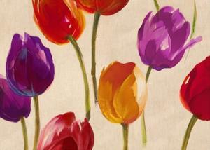 Tulip Funk by Luca Villa