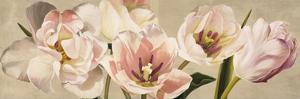 White Flowers by Luca Villa