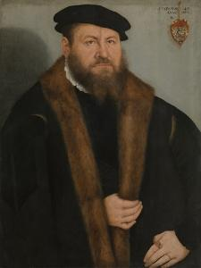 Portrait of a Man, 1557 by Lucas Cranach the Younger