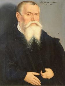 Portrait of Lucas Cranach the Elder, 1550 by Lucas Cranach the Younger