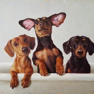 3 Amigos by Lucia Heffernan