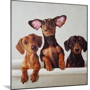 3 Amigos by Lucia Heffernan
