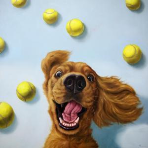 Ball Boy by Lucia Heffernan