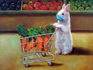 Quarantine Shopping by Lucia Heffernan
