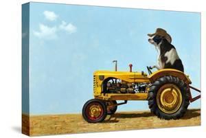 Uncommon Cowboy by Lucia Heffernan