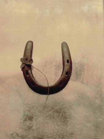 Lucky Horse Shoe on Dusty Rose Metallic III