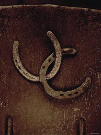 Lucky Horse Shoes on Rust Metallic
