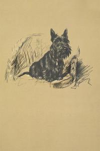 A Scottie by Lucy Dawson
