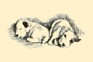 Bertha & Benny by Lucy Dawson