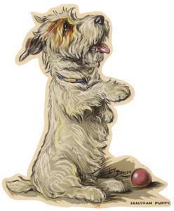 Dogs, Sealyham, Dawson by Lucy Dawson
