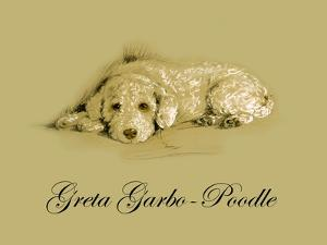 Greta Garbo The Poodle by Lucy Dawson