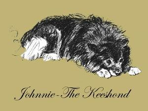 Johnnie-The Keeshond by Lucy Dawson